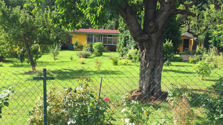 Gepflegtes Gartengrundstück in Wernigerode (verkauft)